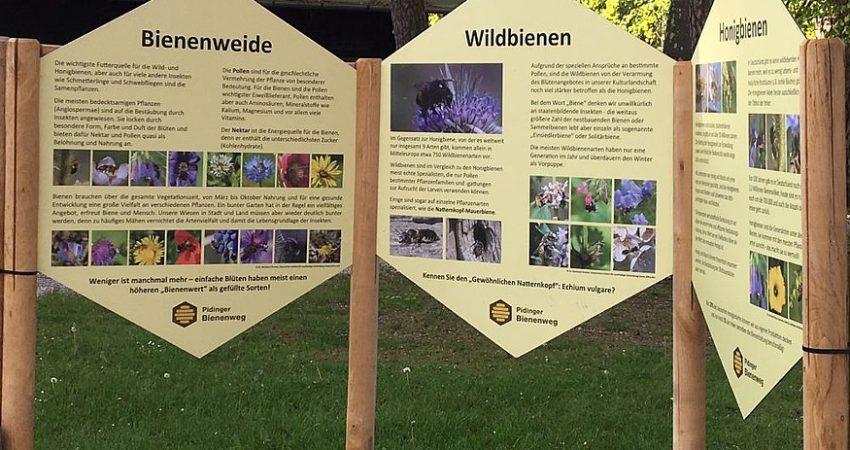Feldafing Schautafeln Bienen, Foto: S. Härtl